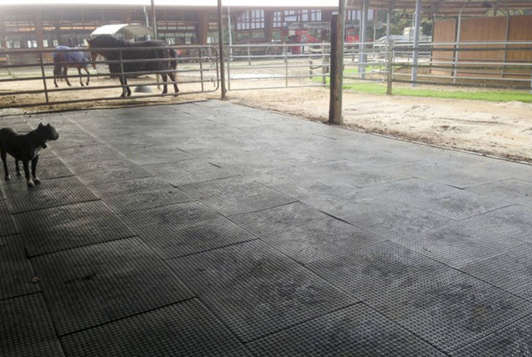 Reitanlage Kamp-Lintfort – open stable surface